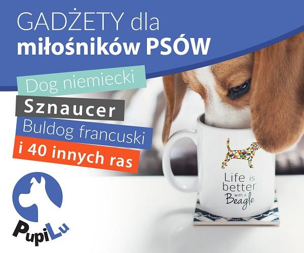 Sklep dla właścicieli psów i kotów
